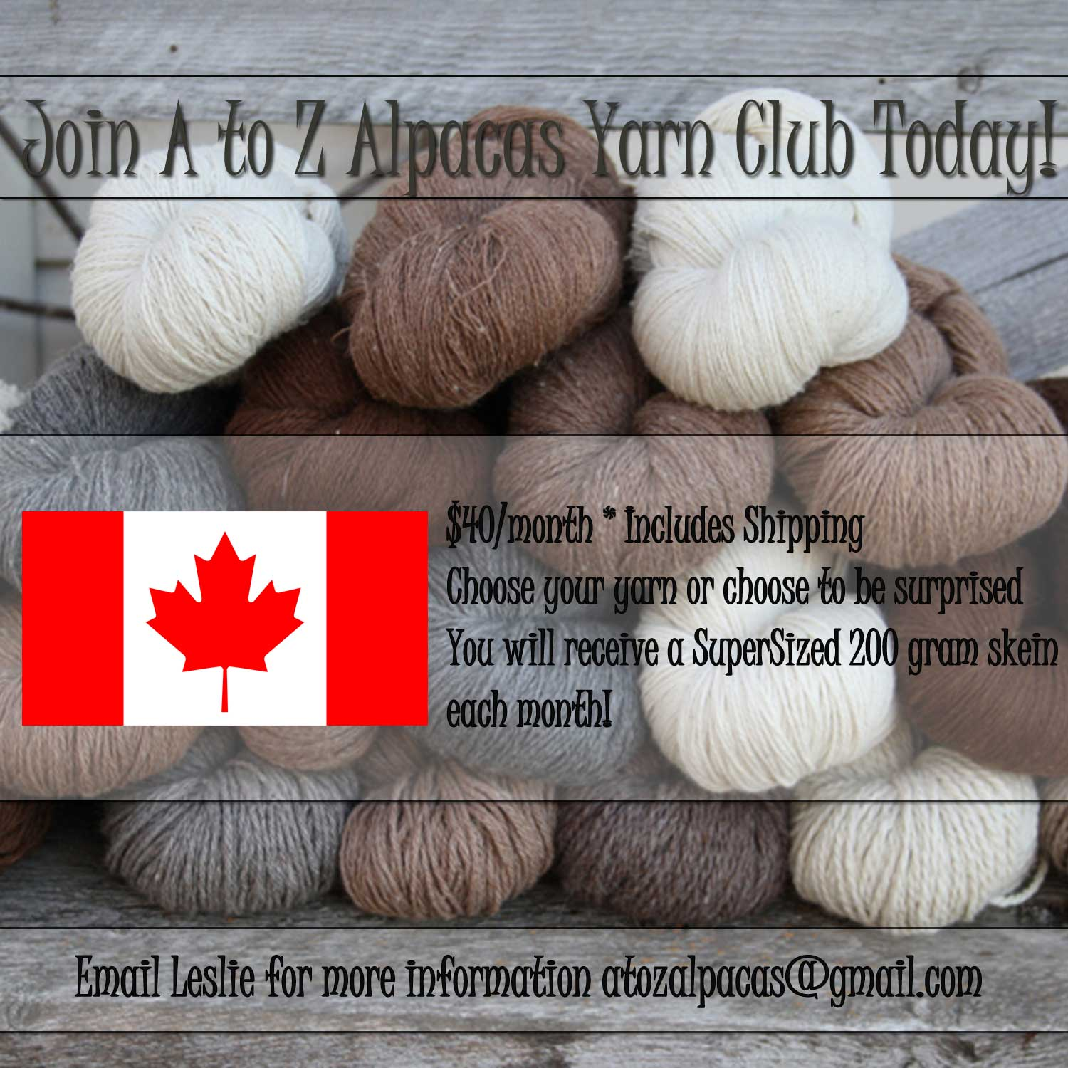 Join the Yarn Club Today and Save!